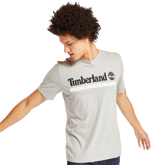 Timberland® 1973 T-Shirt for Men in Grey | Timberland