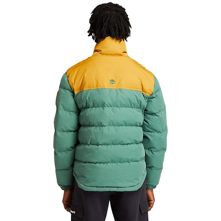 Welch Mountain Puffer Jacket for Men in Green-