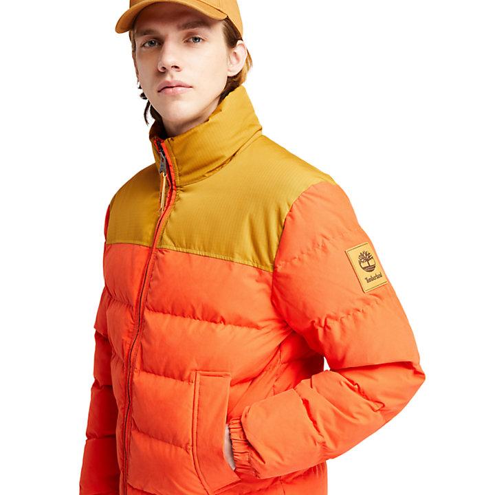 Giubbotto Imbottito da Uomo Welch Mountain in arancione-