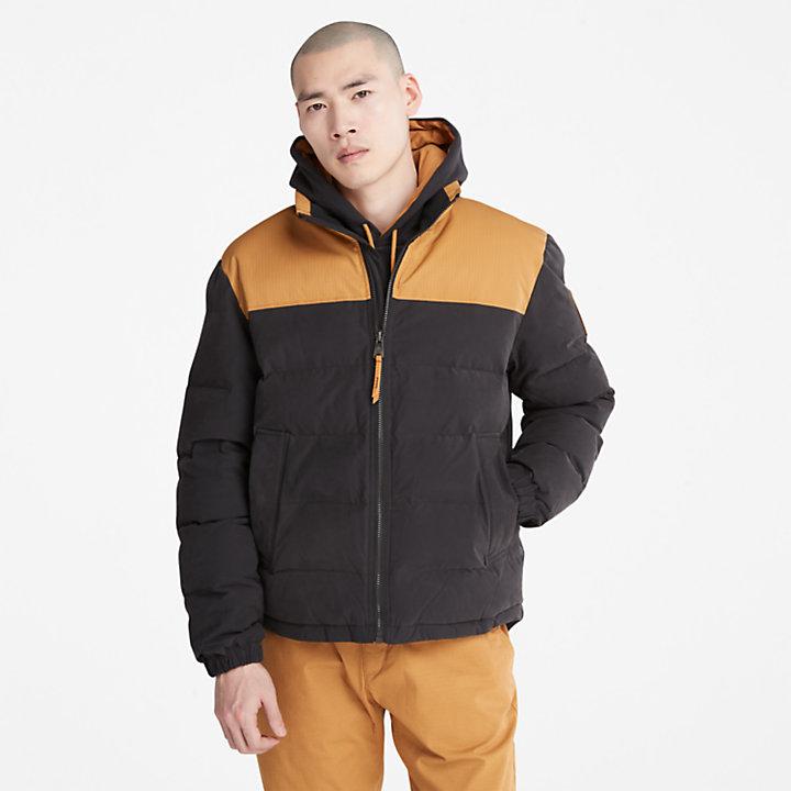 Welch Mountain Puffer Jacket for Men in Black-