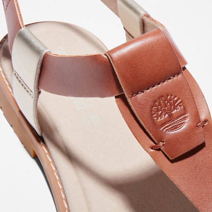 Chicago Riverside Thong Sandal for Women in Brown-