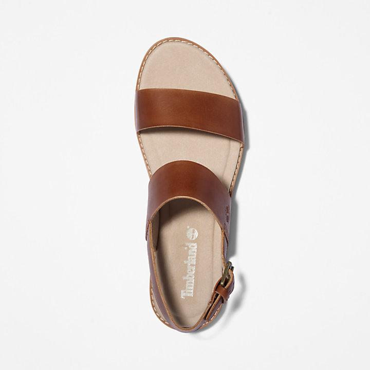 Sandalo da Donna Chicago Riverside in marrone-