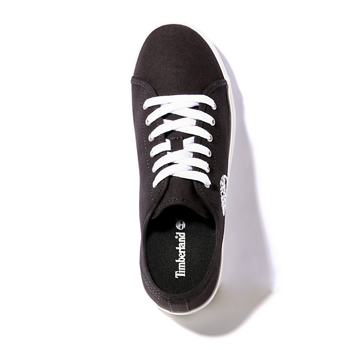 Newport Bay Sneaker for Junior in Black-