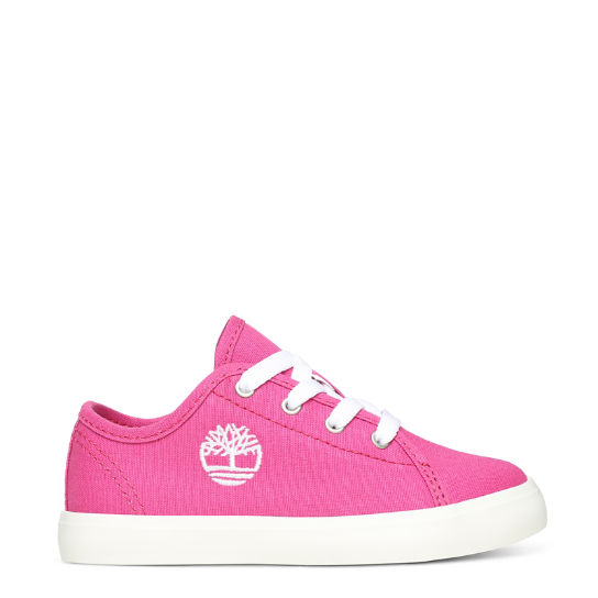 Newport Bay Canvas Oxford for Toddler in Pink | Timberland