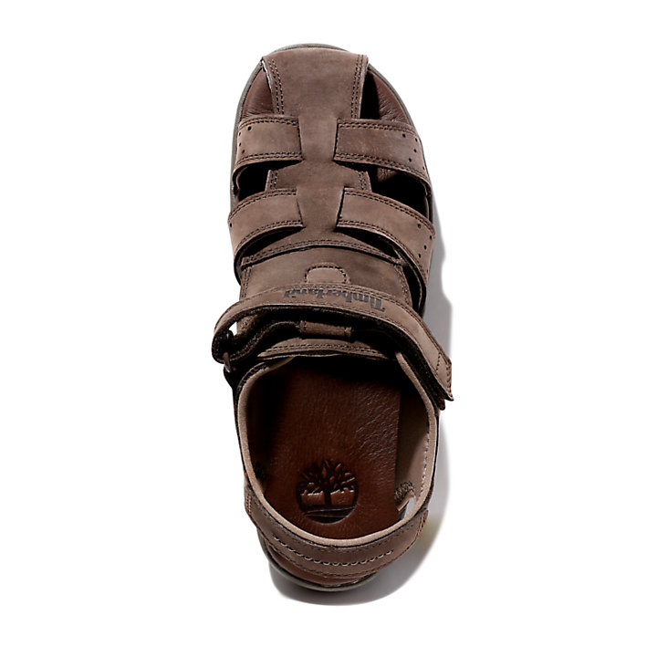 Sandal for Junior in Dark Brown-
