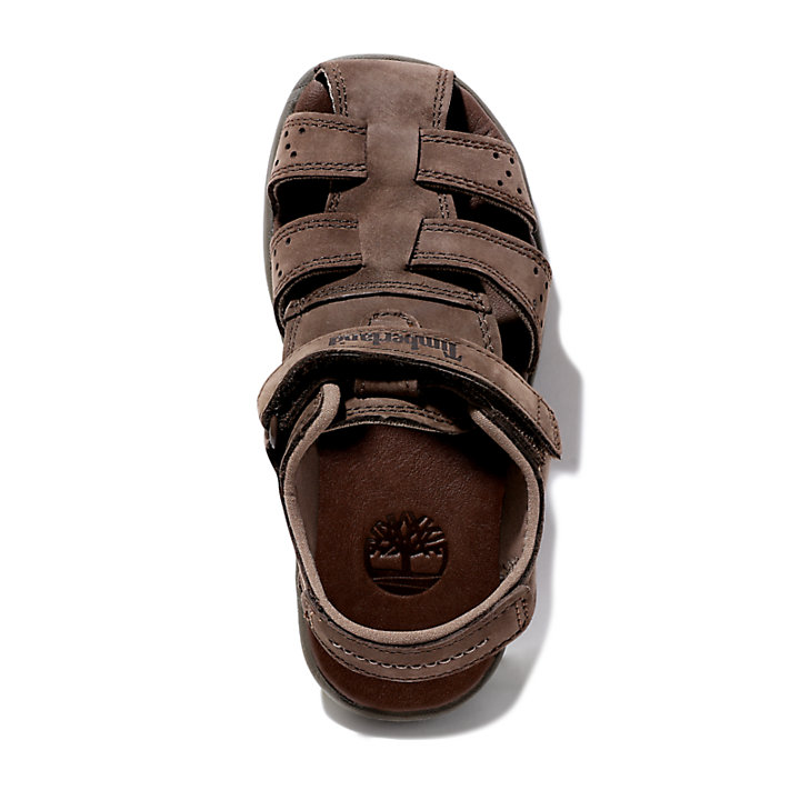 Sandal for Toddler in Dark Brown-