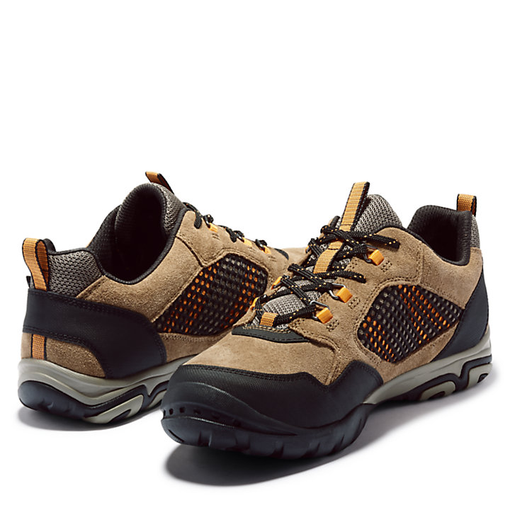 Crestridge Outdoor Shoe for Men in Brown-