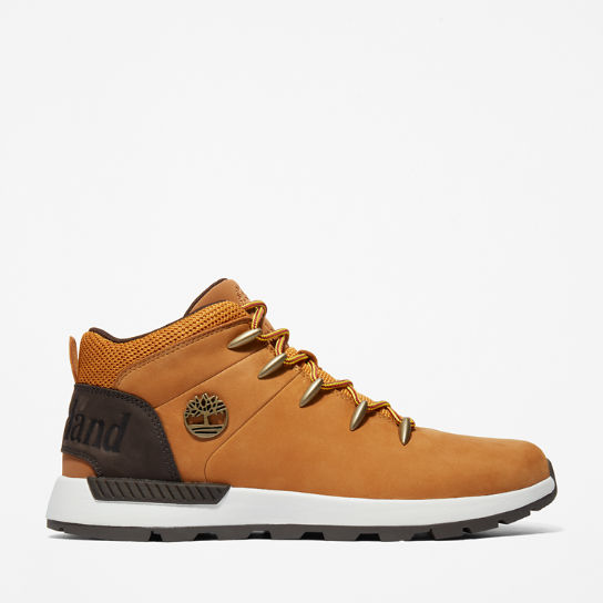 Sprint Trekker Hiking Boot for Men in Yellow | Timberland