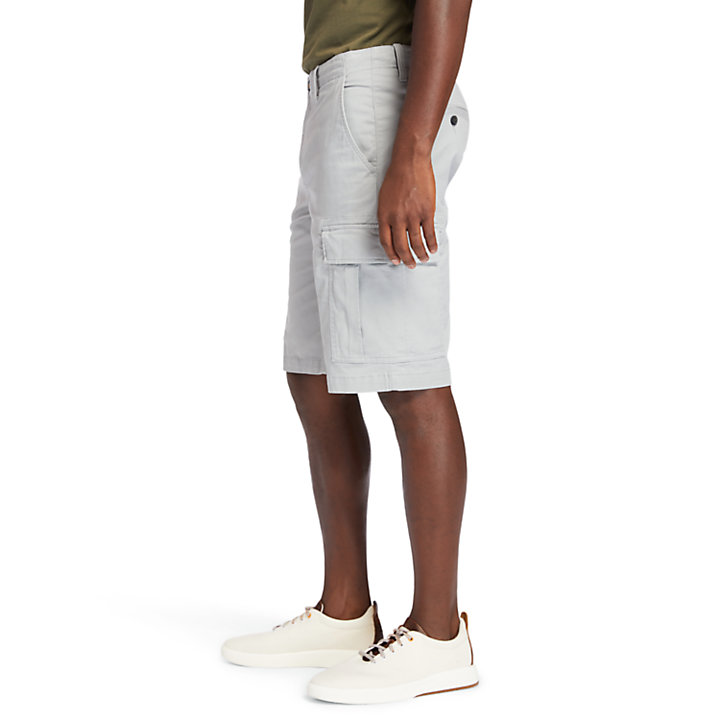 Cargo Shorts for Men in Grey-