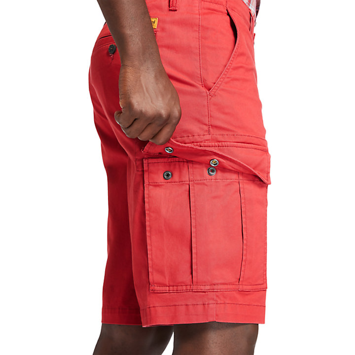 Cargo Shorts for Men in Red-