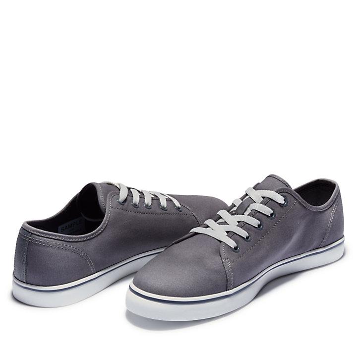 Zapatilla de Lona Skape Park para Hombre en gris-