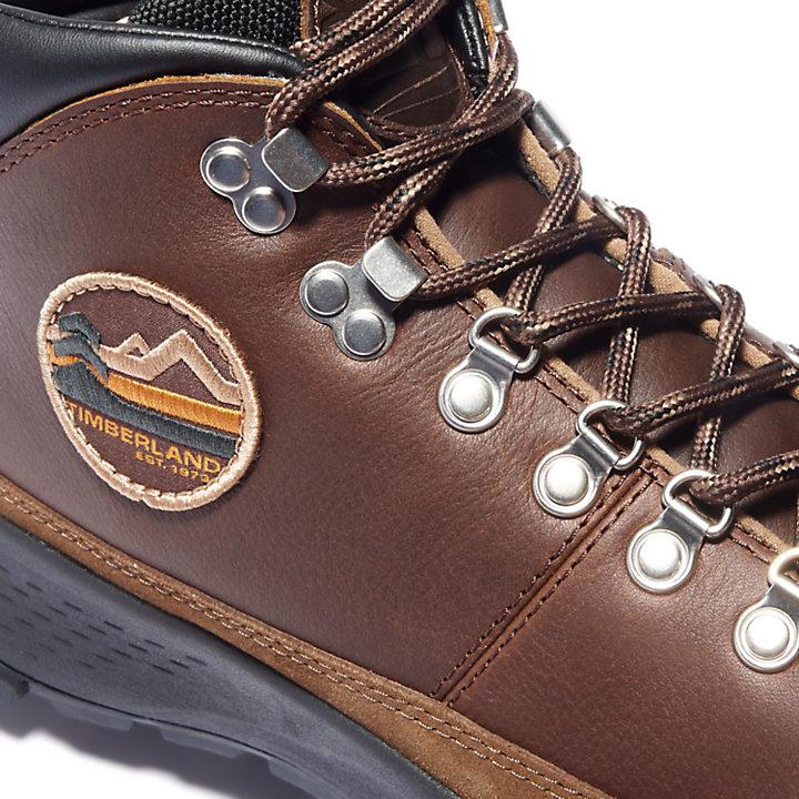 Mills Falls Mid Hiker for Men in Brown-