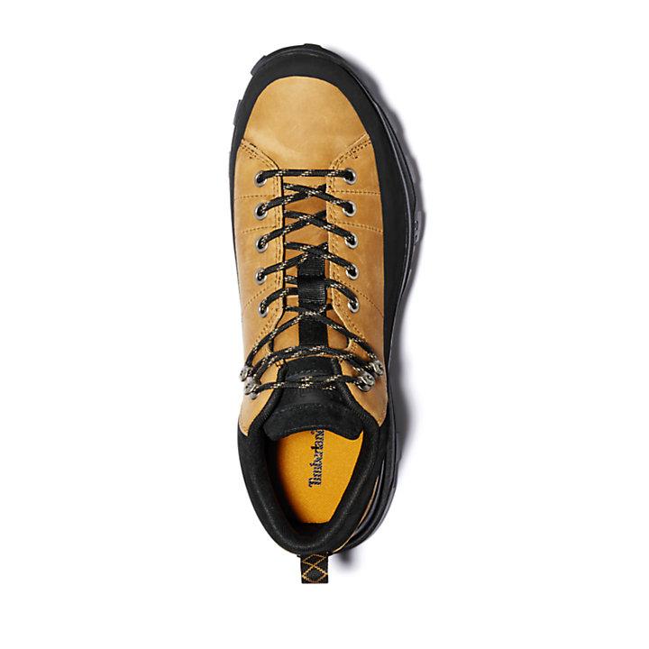 Treeline Low Hiker for Men in Yellow-