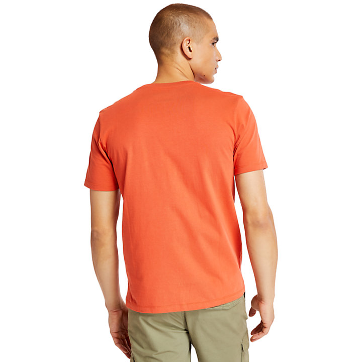 T-shirt Linear pour homme en pêche-