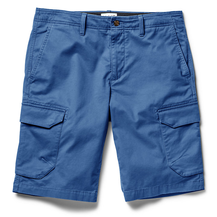 Tarleton Lake Cargo Shorts for Men in Blue-
