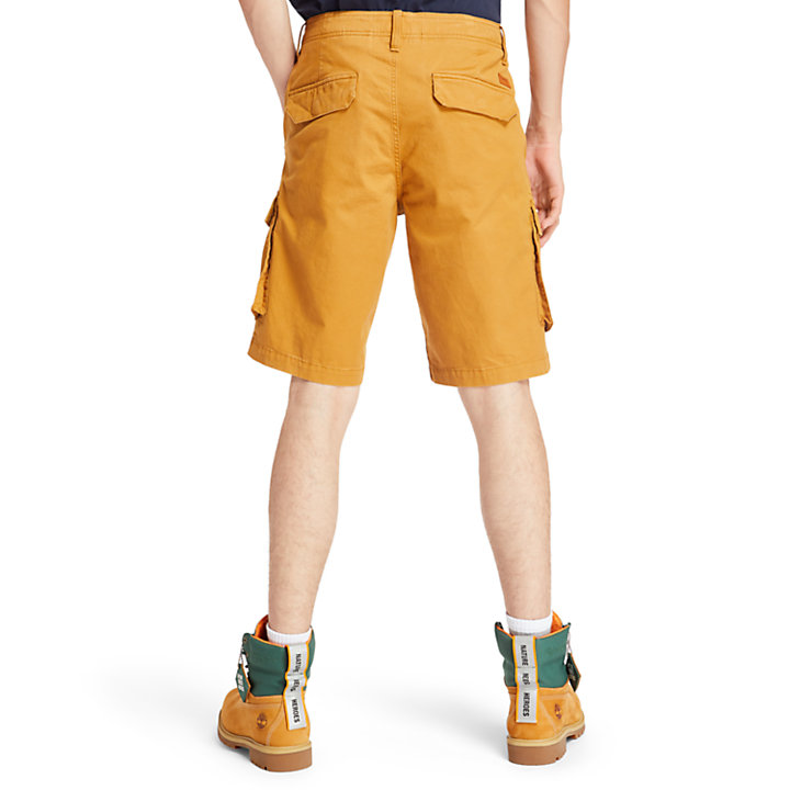 Tarleton Lake Cargo Shorts for Men in Yellow-