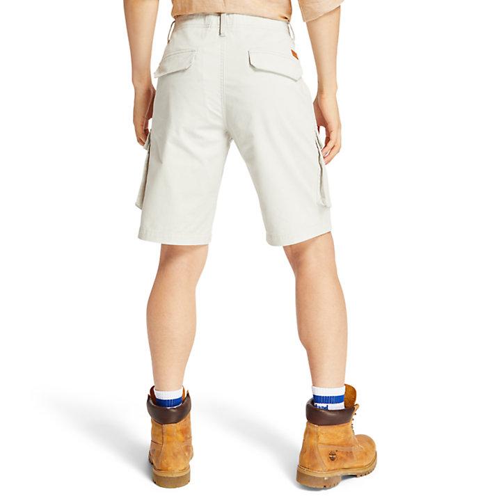 Tarleton Lake Cargo Shorts for Men in Light Grey-