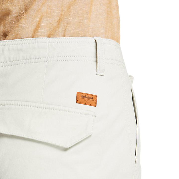 Shorts Cargo da Uomo Tarleton Lake in grigio chiaro-