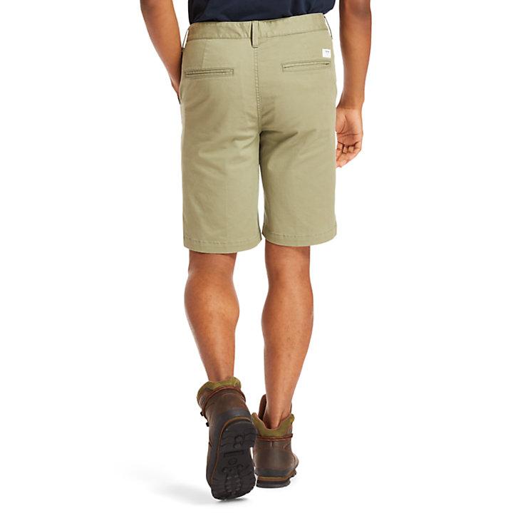 Squam Lake Chino Shorts for Men in Green-