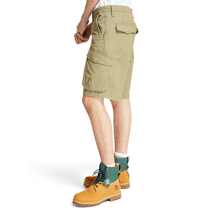 Tarleton Lake Stretch Cargo Short voor Heren in groen-