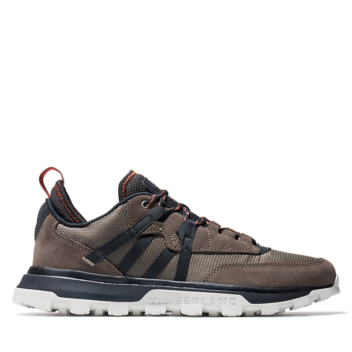 Treeline Low Sneaker for Men in Greige-
