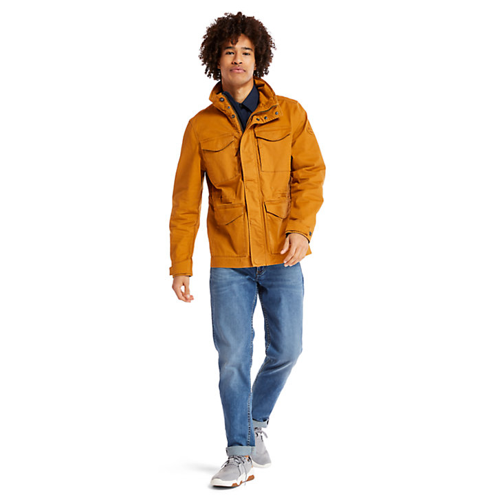 Chaqueta M65 Crocker Mountain para Hombre en amarillo-