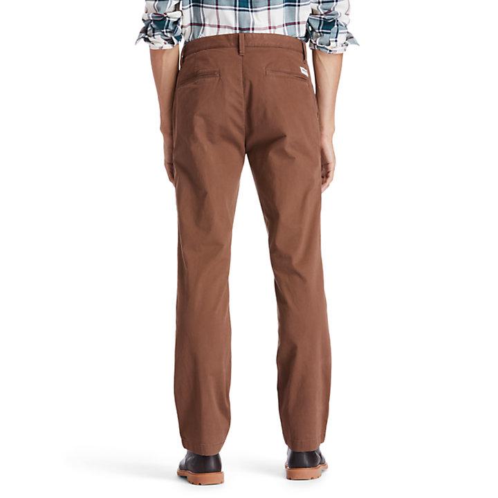 Chinos Elásticos de Pernera Recta Squam Lake para Hombre en marrón-