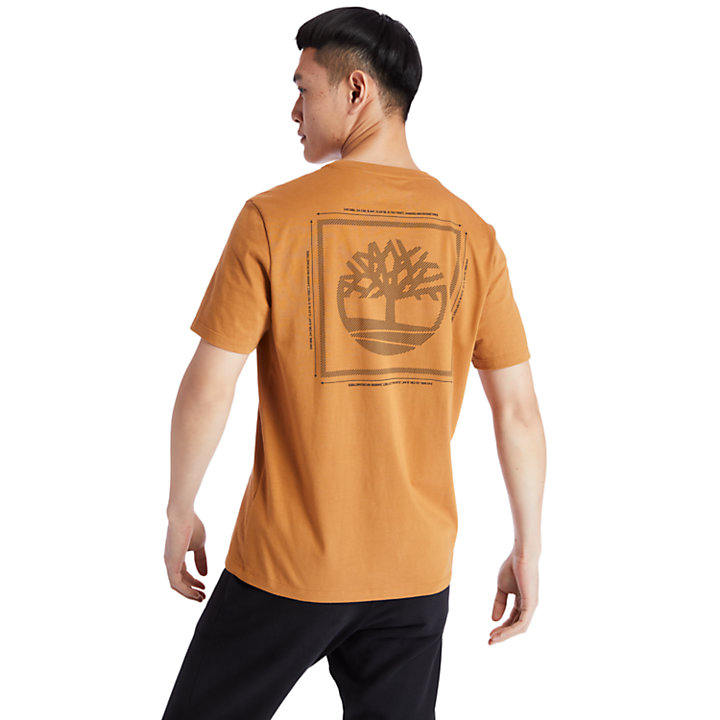 Back Tree Graphic T-Shirt for Men in Yellow-