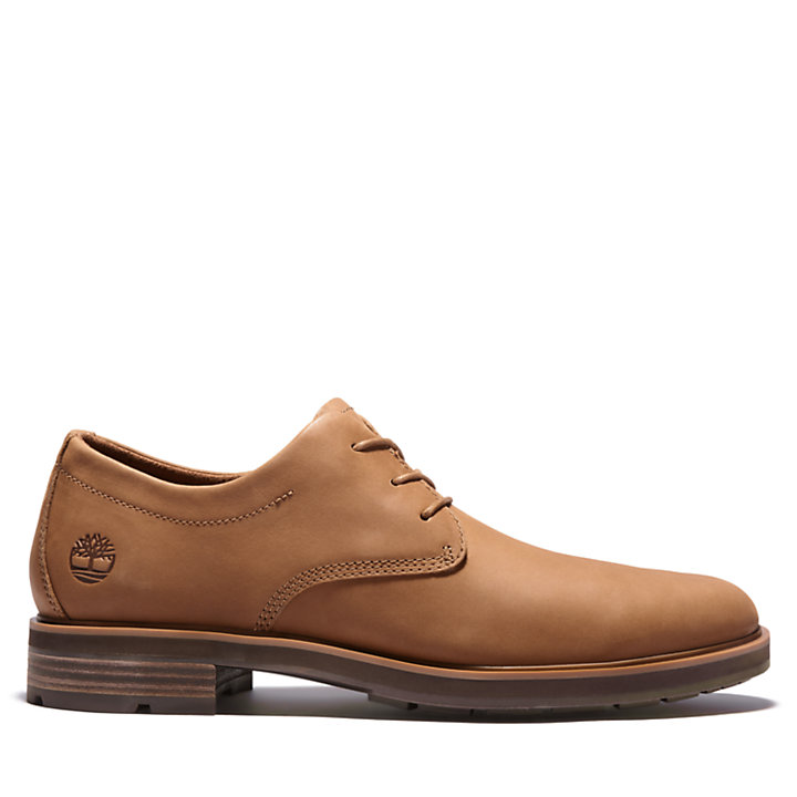 Oxford Windbucks pour homme en Marron-