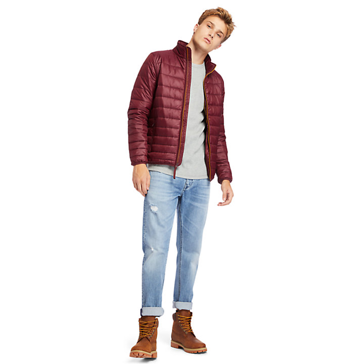 Mount Eastman Quilted Jacket for Men in Burgundy-