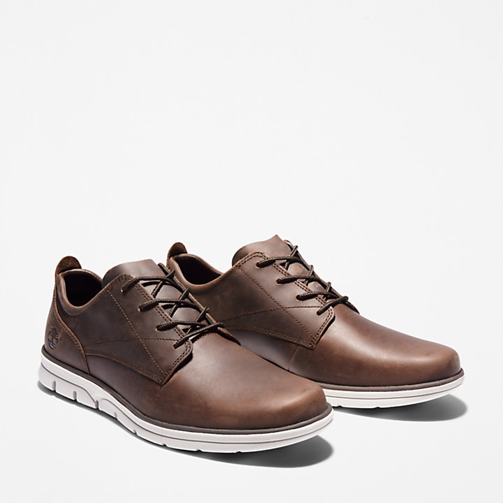 Bradstreet Sneaker for Men in Dark Brown-