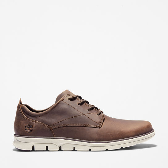 Bradstreet Sneaker for Men in Dark Brown | Timberland