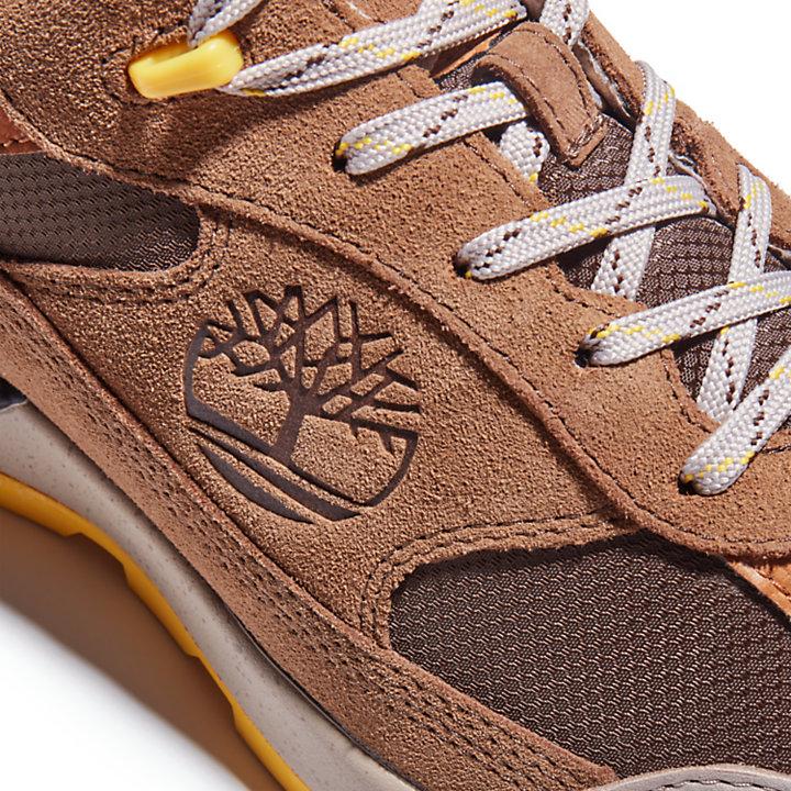 Field Trekker Low Hiker for Men in Brown-