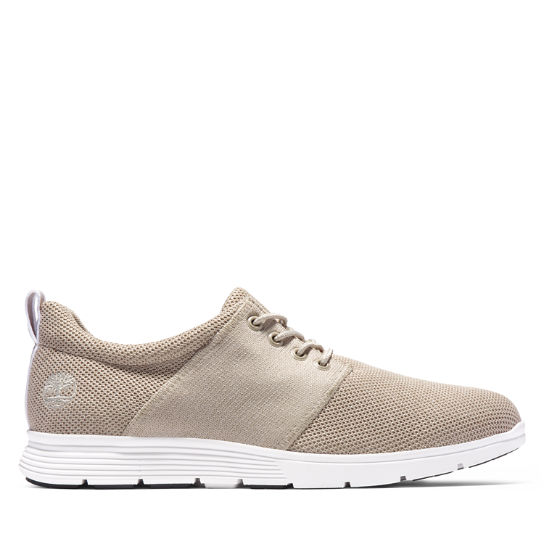 Oxford Killington Knit pour homme en beige | Timberland