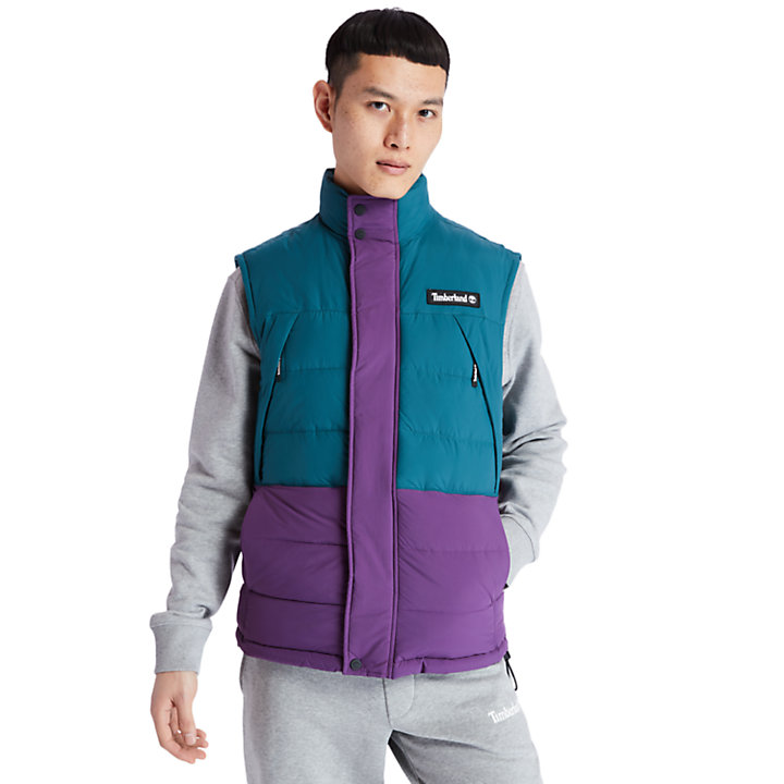 Archive Puffer Vest for Men in Teal-