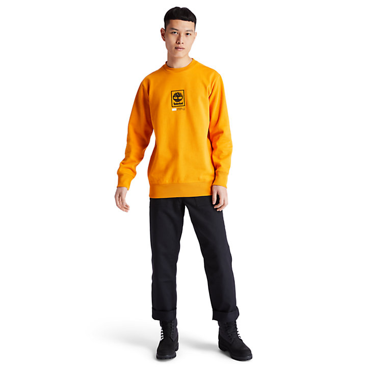 Tree Logo Long Crew Sweatshirt for Men in Orange-