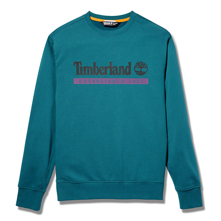 Established 1973 Sweatshirt for Men in Teal-