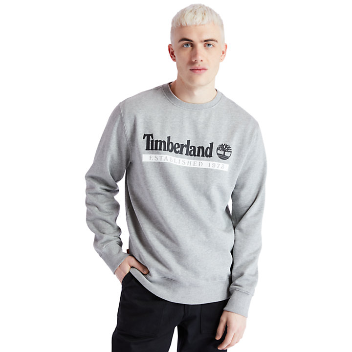 Established 1973 Sweatshirt for Men in Grey-