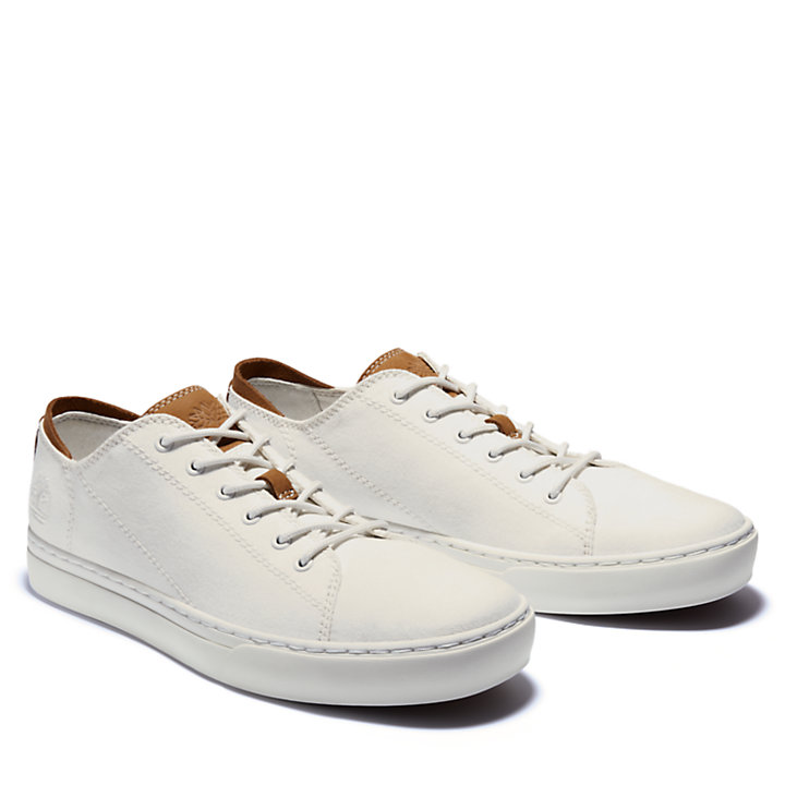 Adventure 2.0 Cupsole Sneaker for Men in White-