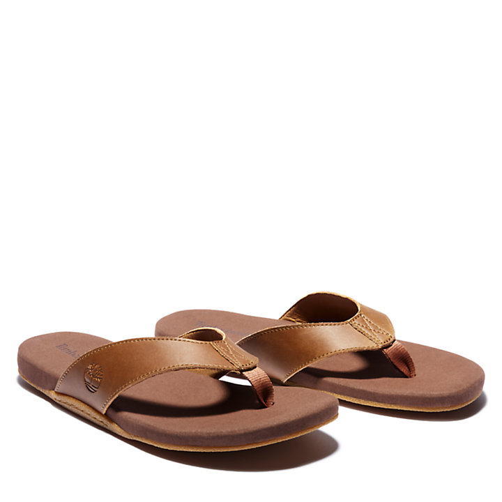 Seaton Bay Thong Sandal for Men in Brown-