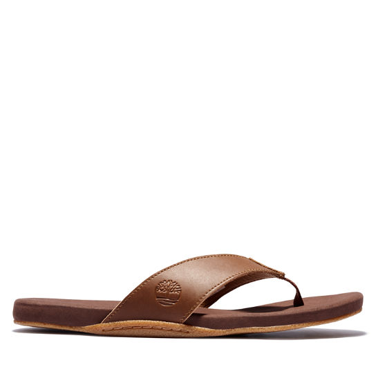 Seaton Bay Thong Sandal for Men in Brown | Timberland