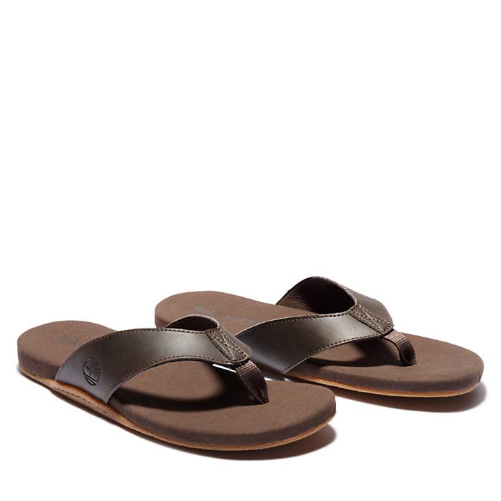 Sandalo Infradito da Uomo Seaton Bay in marrone scuro-