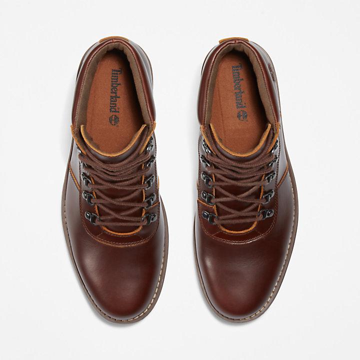Alden Brook Boot for Men in Brown-