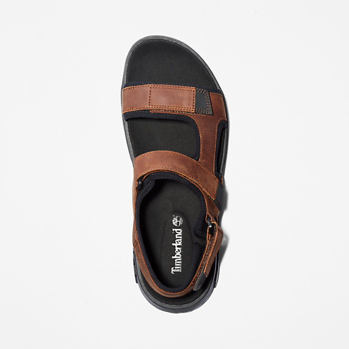 Anchor Watch Backstrap Sandal for Men in Brown-