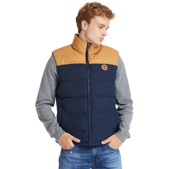 Welch Mountain Puffer Vest for Men in Navy | Timberland