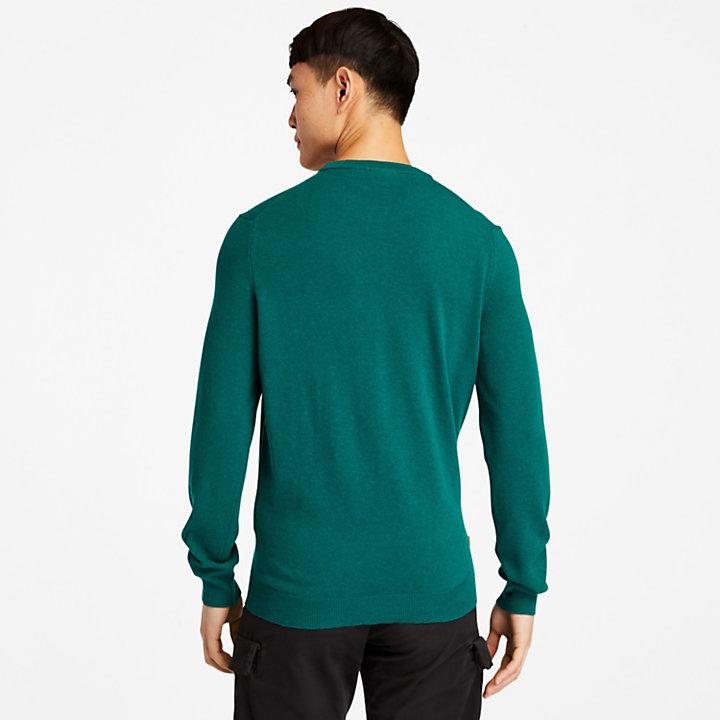 Cohas Brook Crewneck Sweater for Men in Green-