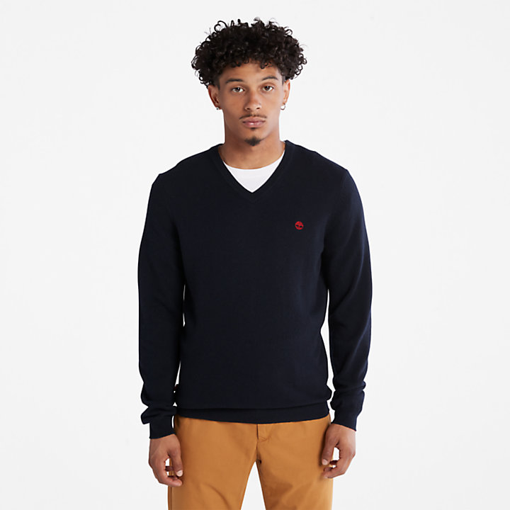 Cohas Brook V-Neck Sweater voor heren in marineblauw-