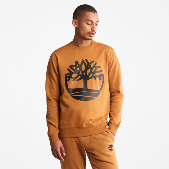 Core Tree Logo Sweatshirt for Men in Yellow | Timberland