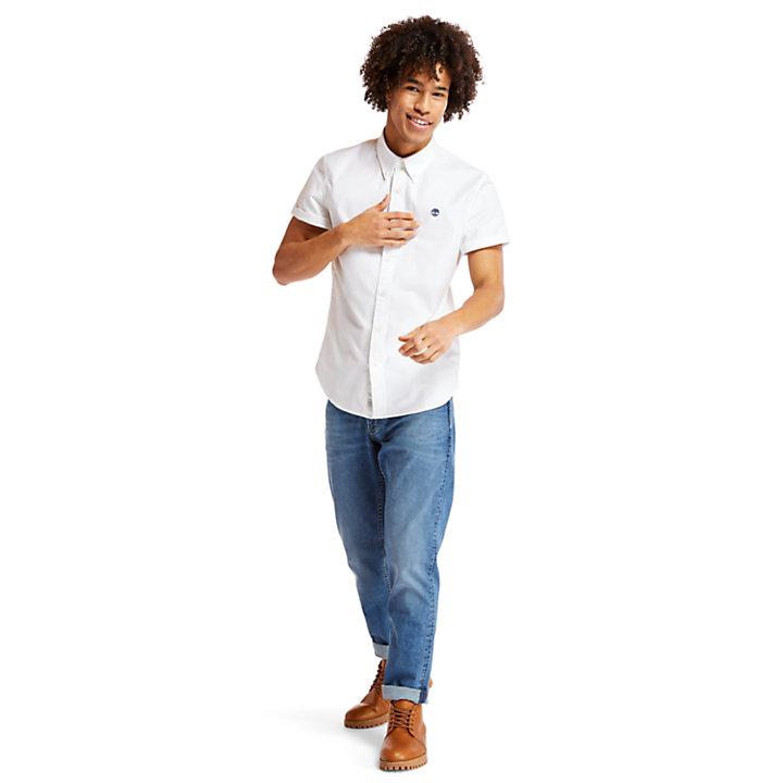 Camicia Oxford da Uomo Pleasant River in bianco-