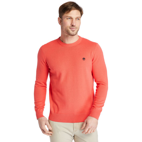 Pull en coton bio Williams River pour homme en rose | Timberland